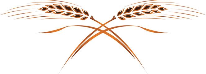 Gold ripe wheat ears; frame, corner or border design element, logo template.