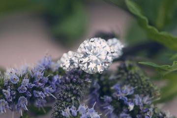 Diamon wedding engagement ring on natural romantic background