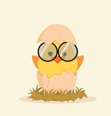 Cute chick in egg