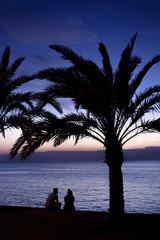 Сouple on shore of Red Sea. Palm, sunset. Aqaba, Jordan