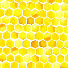 honeycomb watercolor illustration