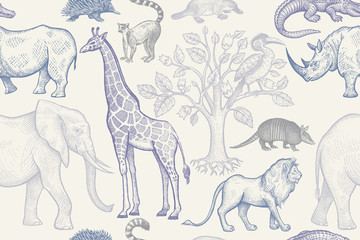 Wzór ze zwierzętami. - 182534928