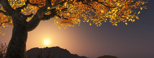 Baum im Herbst in der Abenddämmerung