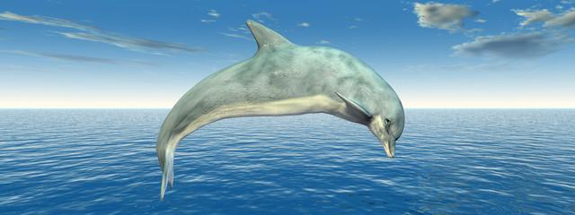 Hüpfender Delfin
