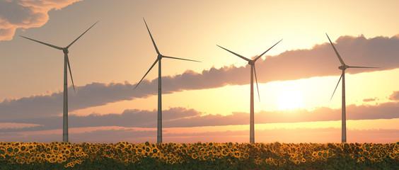 Windkraftanlagen und Sonnenblumen bei Sonnenuntergang
