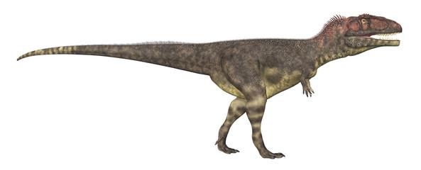 Dinosaurier Mapusaurus, Freisteller