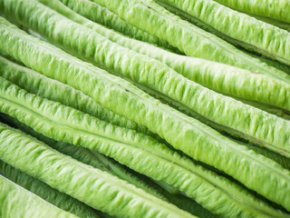 Close up long yard bean background texture.