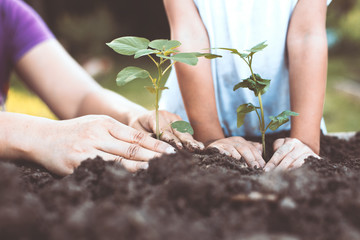 Child and parent hand planting young tree on black soil together as save world concept