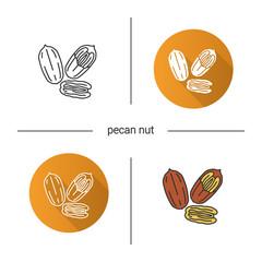 Pecan nuts icon