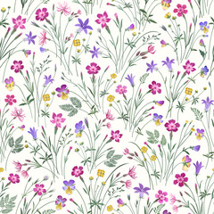 meadow flower seamless pattern on white  background