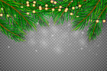 Christmas Decoration. Green branches of a Christmas tree on a background of wood. Vector Eps10
