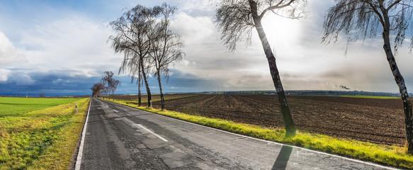 Landstraße im Herbst