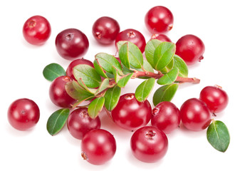 Ripe cranberries and green leaves on the white background.
