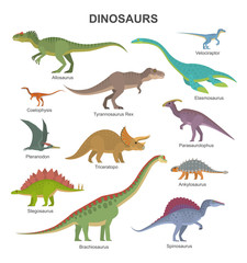 Lamas personalizadas infantiles con tu foto Vector collection of cute flat dinosaurs, including T-rex, Stegosaurus, Velociraptor, Pterodactyl, Brachiosaurus and Triceratop, isolated on white.