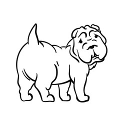Drawing of a dog on a white background