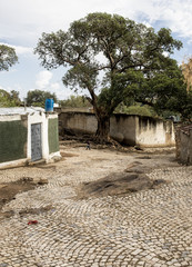 View of the ancient city of Harar, Ethiopia from inside the city walls.