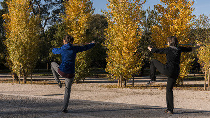 Tai chi with sword in the Retiro park in the city of Madrid