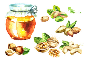 Fresh honey and different kind of nuts set. Watercolor hand drawn illustration