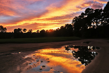 Spectacular nature background.Southern landscape with golf course at dusk and bright colors sky reflects in puddle during after rainy day sunset. Pawleys Island, Myrtle Beach area, South Carolina, USA