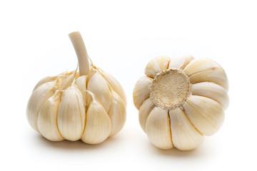 Garlic isolated on the white background.