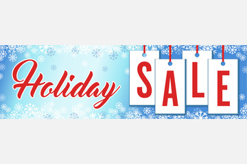 Snowflakes Holiday Sale Wide Banner Vector Illustration 1