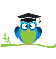 Owl graduate with cap, cartoon symbol