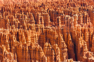 Foto op Canvas Rood traf. Scenic view of beautiful red rock hoodoos and the Amphitheater from Sunset Point, Bryce Canyon National Park, Utah, United States