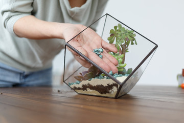Picture of woman's florist showing master class on making florarium with stones