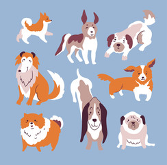 Vector illustration with dog set isolated elements on the blue background. Trendy scandinavian design.