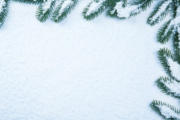 Christmas fir tree frame on white snow background. Free space