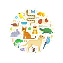 Vector colorful collection of pets, including dog, cat, rabbit, tortoise, parrot, snake, guinea pig, chameleon, hamster, tarantula and canary arranged in a circle, isolated on white.