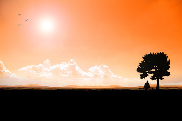 Silhouette Woman sitting on a chair under a tree Scenic view of nature and sunset.