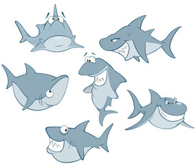 Set of Cute Sharks for you Design. Cartoon Character