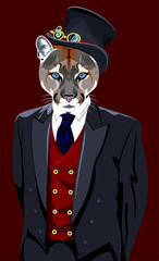 Portrait of puma in the men's business suit and hat