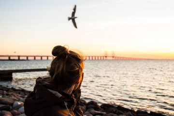 girl standing in malmö watching a seagull in front of the bridge over the great belt
