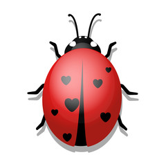 Ladybug with Hearts on White Background.