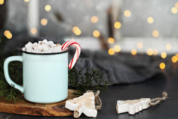 Hot Cocoa Candy Canes and Marshmallows