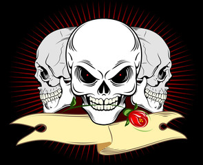 Human skull with banner and roses