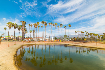 Palm trees reflected on the water in Santa Barbara shore