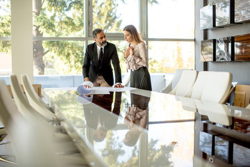 Young woman and middle-aged businessman working together on project