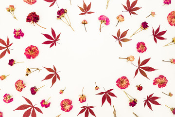 Floral frame of red leaves and pink roses on white background. Flat lay, top view.