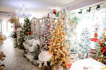 Shop with Christmas trees, toys, garland and other decor
