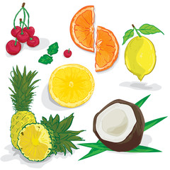 fruit orange lemon coconut cherry pineapple drawing objects