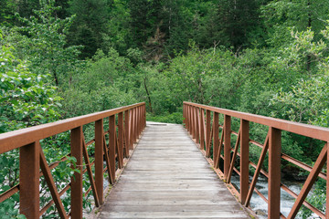 wood and steel bridge in forest