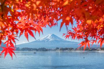 Foto op Plexiglas Asia land mount fuji autumn