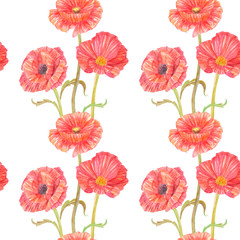 seamless texture with nice poppies on white background. watercolor painting