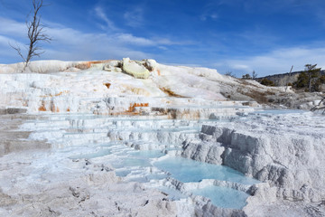 Upper Terrance at Mammoth Hot Springs area, Yellowstone National Park
