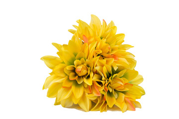 yellow flowers pot