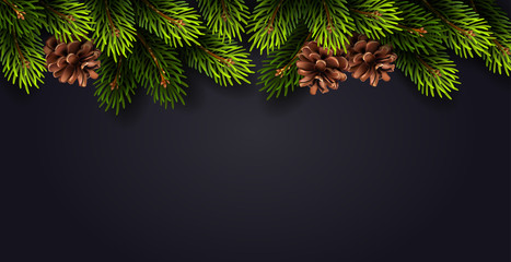 Christmas decoration with fir branches and cones on dark background