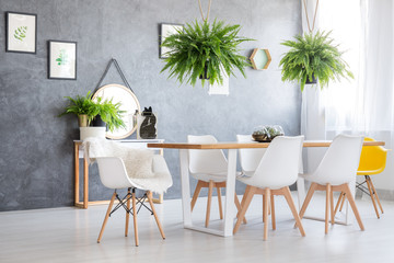 Ferns hanging over dining table